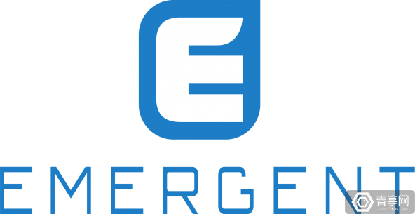 logo_vert