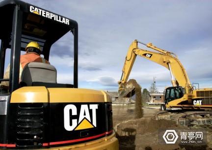 Cat-1000x705