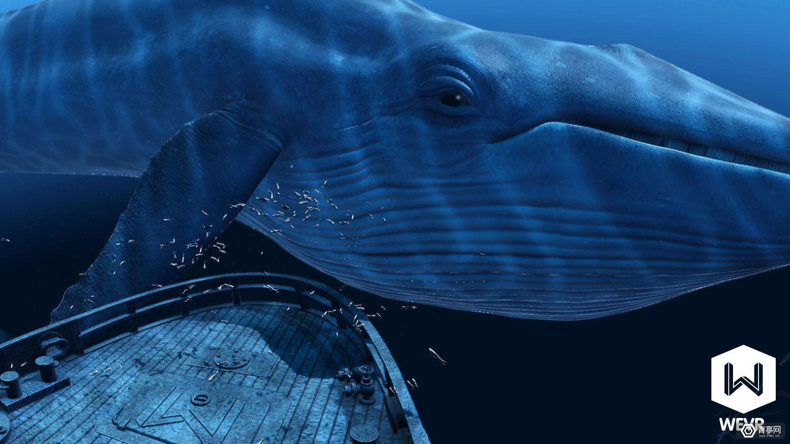 在博物馆用VR看深海鲸鱼是什么体验?