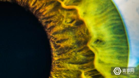Eye_Banner-1200x505
