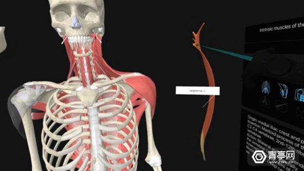 医学院学生的福利:用VR技术模拟人体解剖试验