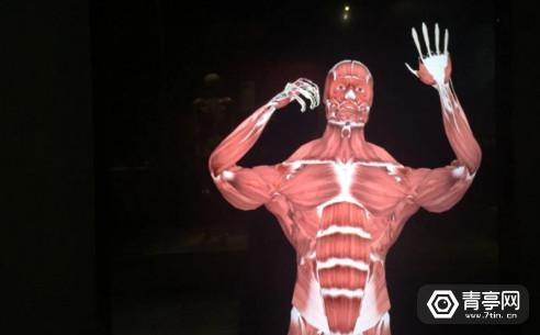 body-worlds-decoded-5
