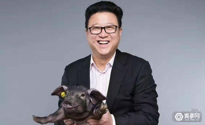 丁磊将养猪进行到底,网易开新猪场还搞了个AR餐厅