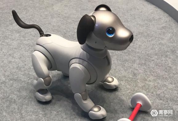 索尼Aibo机器狗将重回美国市场,售价2899美元