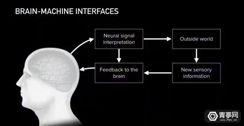 与AI共生:马斯克Neuralink的脑机接口梦