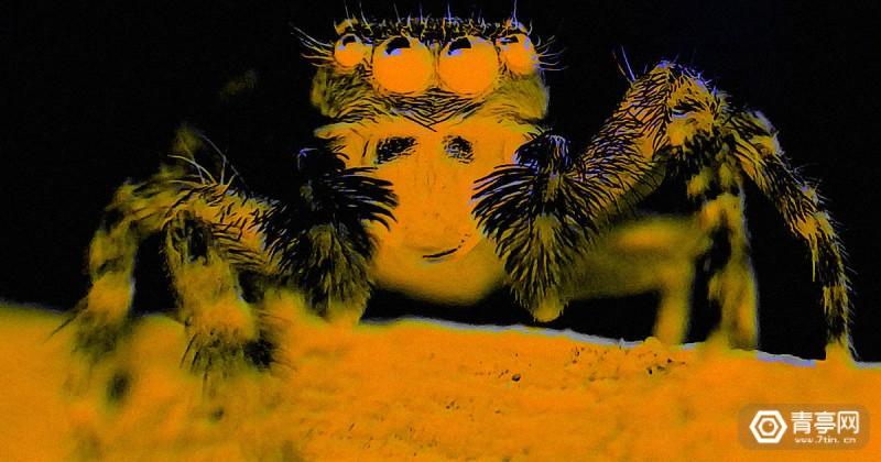 vr-people-feel-like-spiders-1200x630