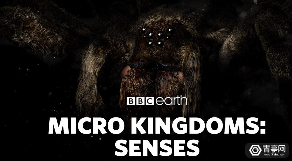 BBC推昆虫世界AR应用,将于秋季登陆Magic Leap