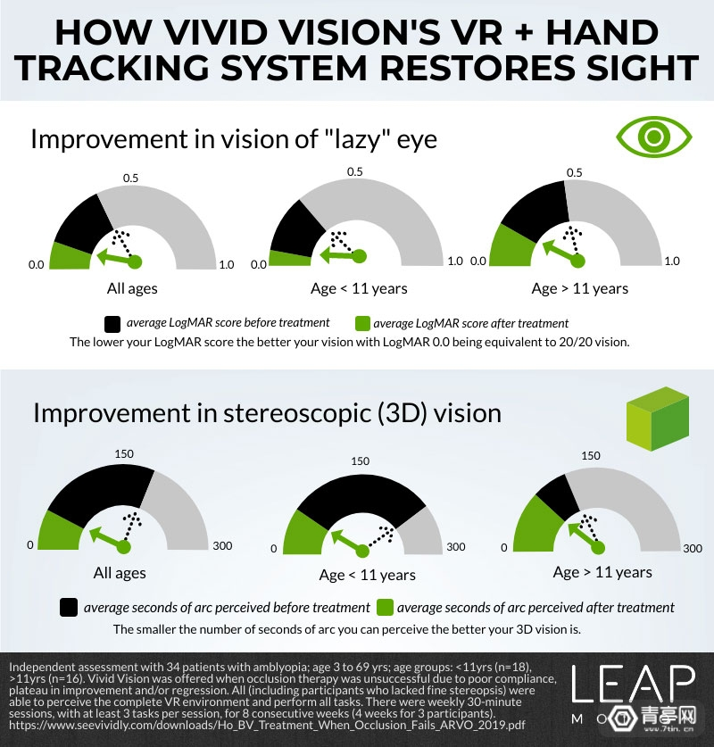 vivid-vision-infographic