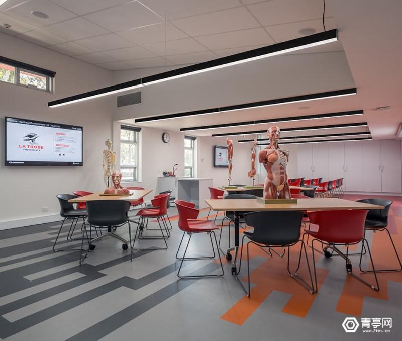 澳大利亚大学将使用VR和AR技术为学生教授解剖学