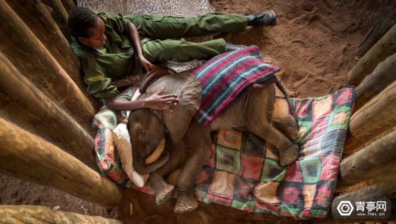 my-africa-360-environment-film-1021x580