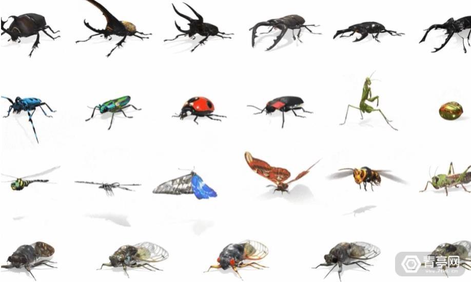 谷歌搜索AR动物:新增23种昆虫