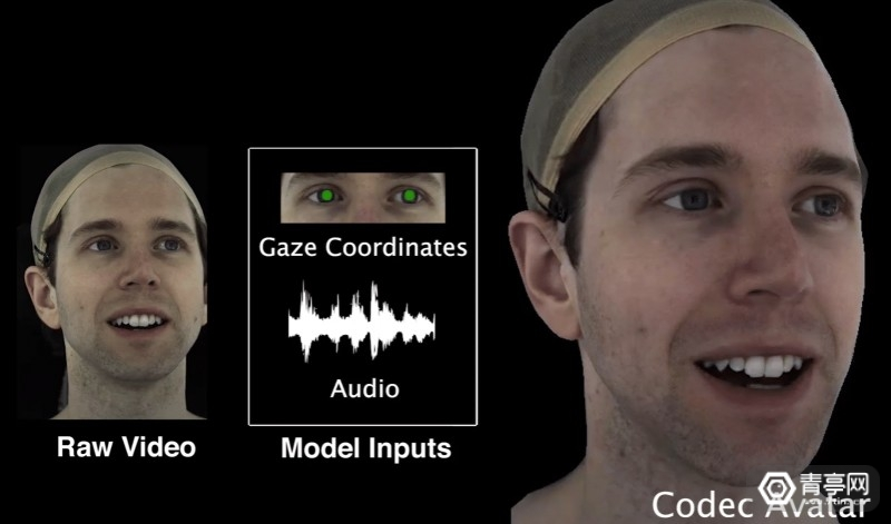 FRL_AudioGazeCodecAvatars
