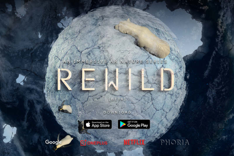 REWILD-KV-2020-1920X1080-BETA-1-1260x840