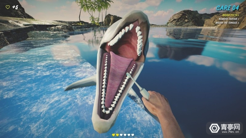 Dolphin-Trainer-VR-1536x864