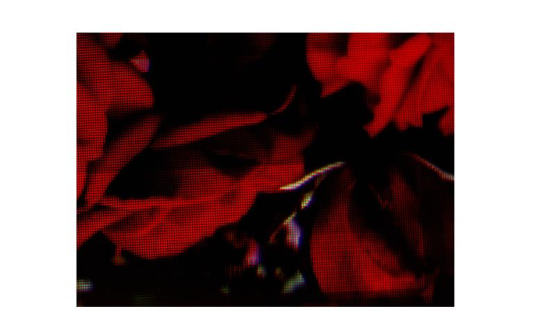 微信图片_20210112114153